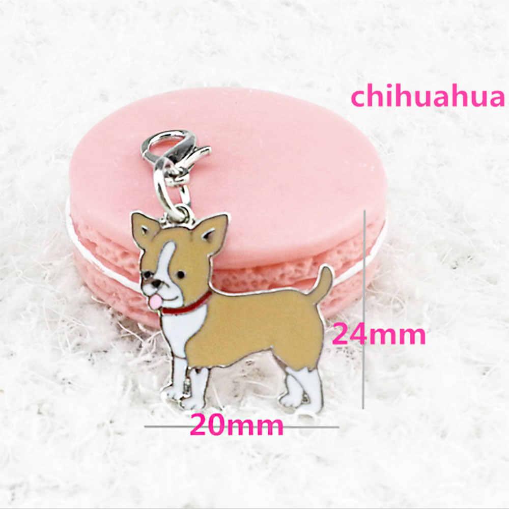 طوق بكلاب قلادة اللون مجوهرات هدايا سيارة مفتاح ملحقات السلسلة المعدنية دائم القطط الحيوانات الأليفة العلامات الحيوانات الأليفة الملحقات