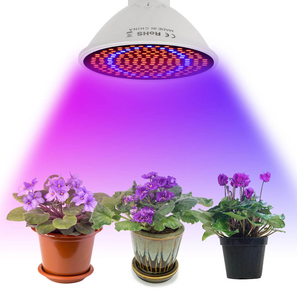 20W E27 LED Grow Light With Lamp Holder Clip Fitolampy Growing Lamp For Flowers Seeds Houseplant Indoor Plant Lights Grow Box