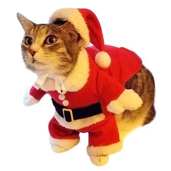 Winter Christmas Cat Costume  1