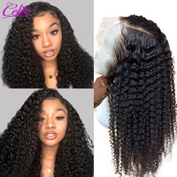 Celie Kinky Curly Wig 13x6 Lace Front Human Hair Wigs Pre Plucked Lace Front Wig With Baby Hair 180 Density Human Hair Wig