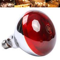 Pet Habitat Lighting Smart LED Light Poultry Heat Incubator Lamp Pet Infrared Bulb Light Rearing 100W/150W/200W/250W Dull Red