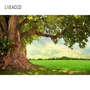 Image 5 - Laeacco selva bosque árbol viejo pastizales naturaleza escénica fotografía fondo personalizado fondos fotográficos para estudio fotográfico