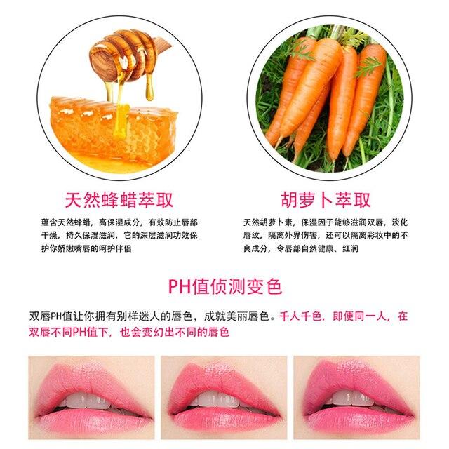 New Moisture Lip Balm Aloe Vera Natural Lip Balm Temperature Color changing Makeup Lipstick Long Lasting Cosmetics TSLM2 5