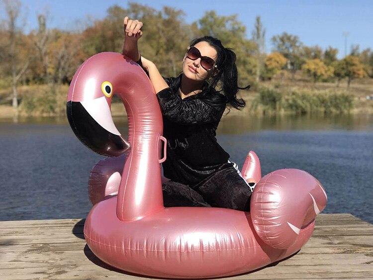 Cheap swan swimming