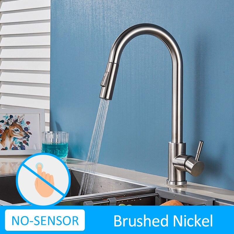 No-Sen-Brush Nickel