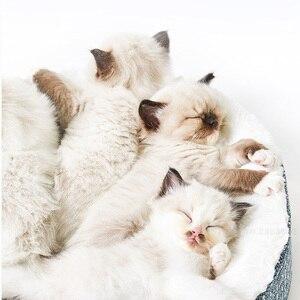 Image 2 - Youpin cama de gato para dormir profunda, cálida, además de terciopelo, perrera Universal extraíble y lavable para mascotas, cama para perros pequeños de peluche