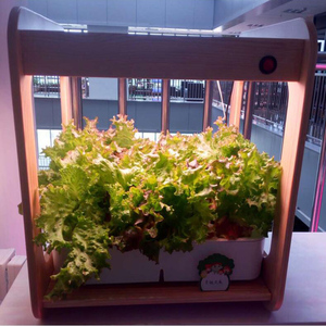Image 5 - Лампа полного спектра для выращивания растений, комнатное гидропонное соляное оборудование для теплиц и цветов