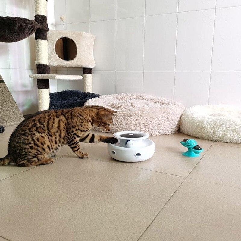 Animal de estimação gato torre faixas disco