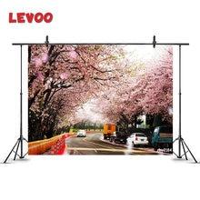 Levoo Весна Вишневое дерево фон туннель уличные лепестки Танцы