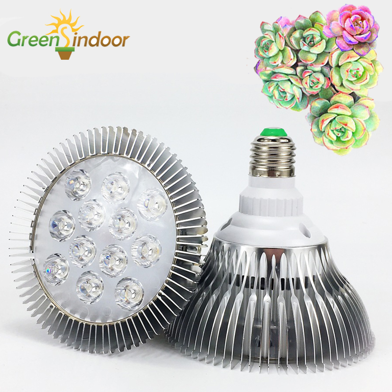 Fitolamp Full Spectrum LED Grow Light 10W 30W 50W 80W Red Blue UV IR Growth Lamp For Hydroponics Flowers Plant Vegetable Growing