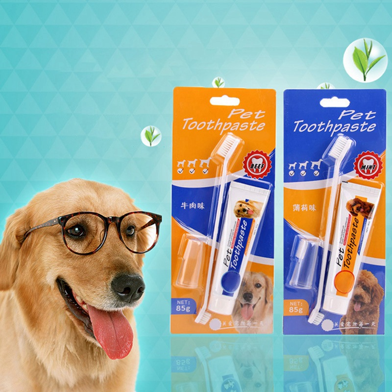 Pet Teeth Cleaning Toothpaste Toothbrush Set Dog Durable Double Sided Mint-flavor Beef-flavor
