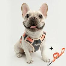 Светоотражающая шлейка для собак и кошек нейлоновый жилет без