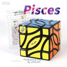 LanLan Cube ryby kostki dzban 4-rogu kostki MagicFour rogu kostki pokój ryby profesjonalne Puzzle antystresowy zabawki edukacyjne tanie tanio MICUBE Z tworzywa sztucznego Mini 5-7 lat 8-11 lat 12-15 lat Dorośli 6 lat 8 lat Dziwne kształt magiczna kostka Puzzle cube