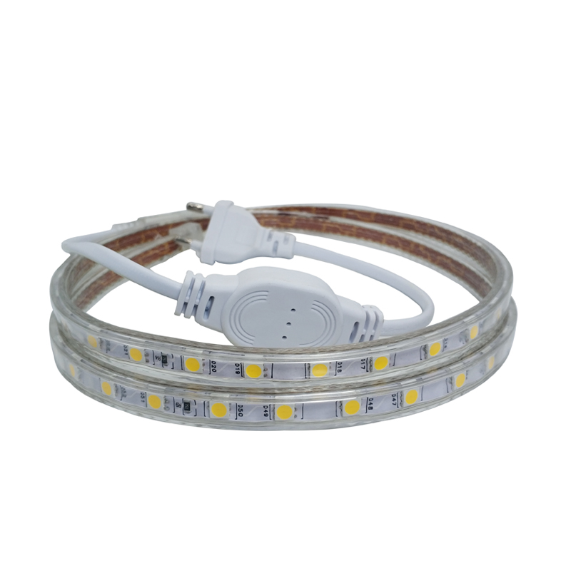 220 V Led Strip 220V Tape Flexible SMD 5050 1M 5M 10M 15M 20M LedStrip Waterproof IP67 With Dimmer 220V Led Strip Warm White