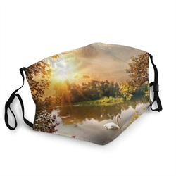 Sun Swan Lake visage couverture bouche bouclier cou écharpe unisexe coupe-vent respirant réutilisable Anti-poussière bouclier noir