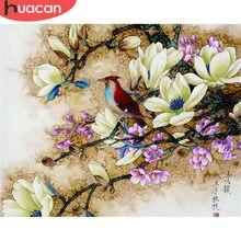 HUACAN malowanie numerami kwiaty ptak zdjęcia płótno DIY farba olejna według numerów do salonu Wall Art prezent do dekoracji domu