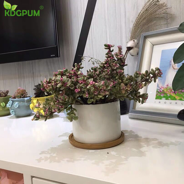 White Ceramic Flower Pot Succulent Flowerpot With Bamboo Bottom Tray Bracket Crafts Vase Office Garden Home Decoration Ornament 6