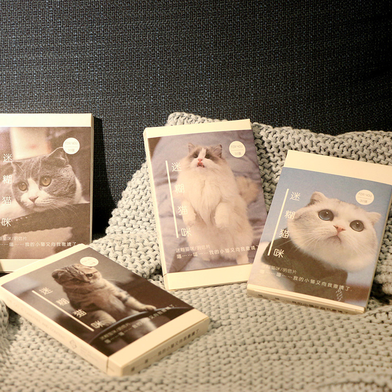30 Sheets/Set Cute Ragdoll Cat Scottish Fold Postcard Birthday Bussiness Gift Card Set Message Card