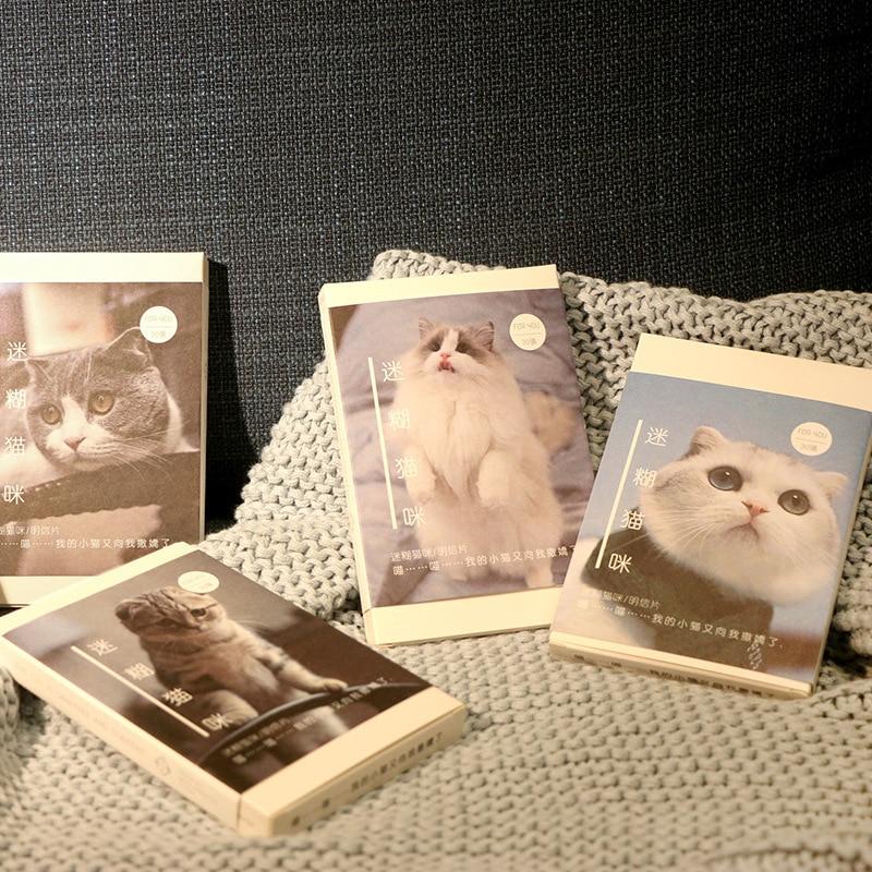 30 Sheets/Set Cute Ragdoll Cat Scottish Fold Postcard Birthday Bussiness Gift Card Set Message Card