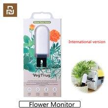 Versão internacional youpin flora crescer cuidados com a grama de flores monitor digital plantas grama do solo testador água sensor monitor flor