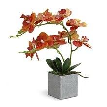 אינדיגו  (1 סט) סחלב סידור אמיתי עם אגרטל מגע בונסאי חתונה מסיבת פרח קישוט מרכזי חנות פרחים Dropshipping
