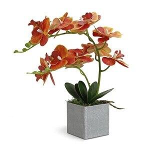Image 1 - INDIGO  (1set) Orchidee Arrangment Echt Mit Vase Touch Bonsai Hochzeit Party Blume Dekoration Mittelpunkt Floristen Dropshipping