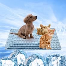 Breathable Pet Dog Mat Ice Cooling Mats Blanket Soft Pet Dog Bed Mats For Dogs Cats Sofa Tour Camping Yoga Sleeping Pet Supplies summer dog cooling mats cat blanket ice pet dog bed mats for dogs cats sofa portable tour camping yoga sleeping pet accessories
