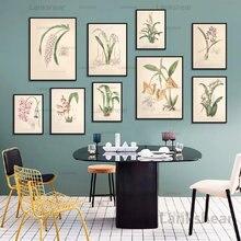 Античный ботанический холст художественные плакаты и принты