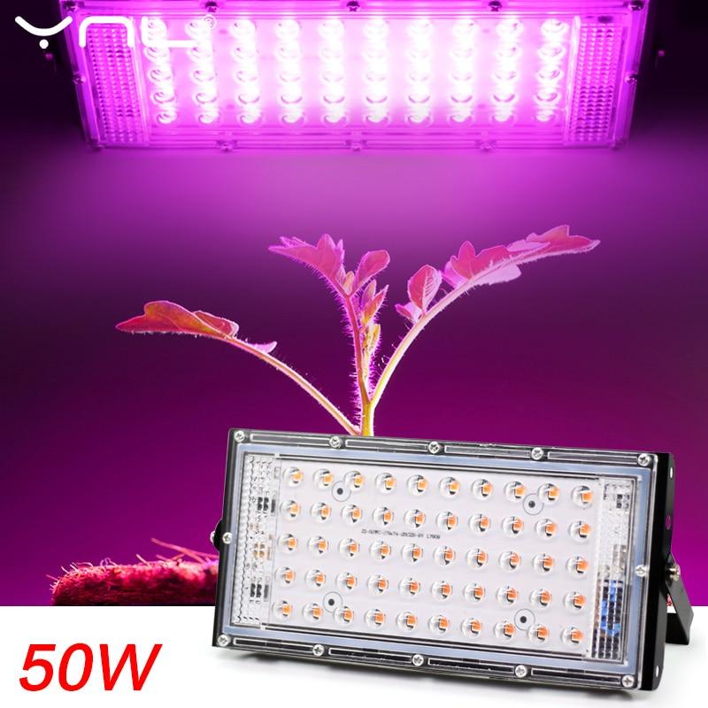 LED Grow Light Phyto Lamp AC 220V 50W LED Full Spectrum Floodlight Indoor Outdoor Greenhouse Plant Hydroponic Plant Spotlight 1