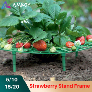 Image 1 - Strawberry Stand Frame Holder 5/10/15/20 Balcony Planting Rack Fruit Support Plant Flower Climbing Vine Pillar Gardening Stand