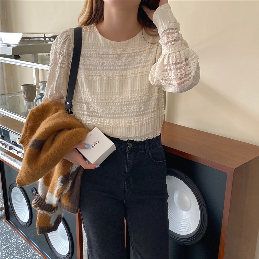 H3497fb3eb2b54a95983488f8a9fe499d5 - Spring / Autumn Korean O-Neck Long Sleeves Solid Lace Blouse