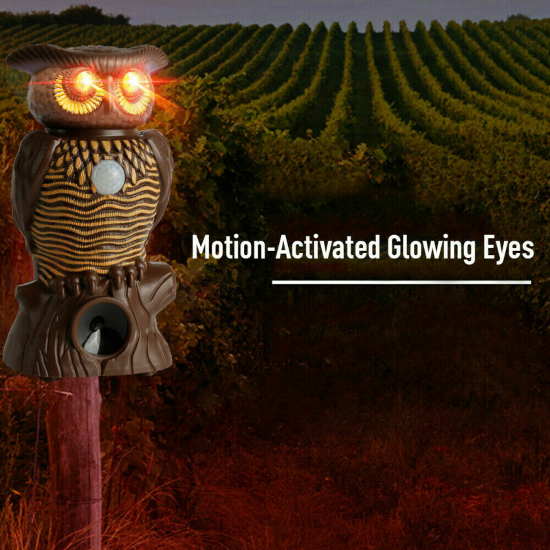 2019 Newest Owl Alert Motion Activated Security Statue With Light-Up Eyes Drive animals such as bear deer