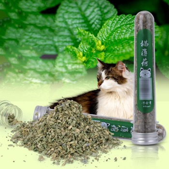 40ml Natural Healthy Treats Catnip Fresh Organic Dried Catnip Improve Pet Cat Appetite DIY Kittens Scratching Toys image