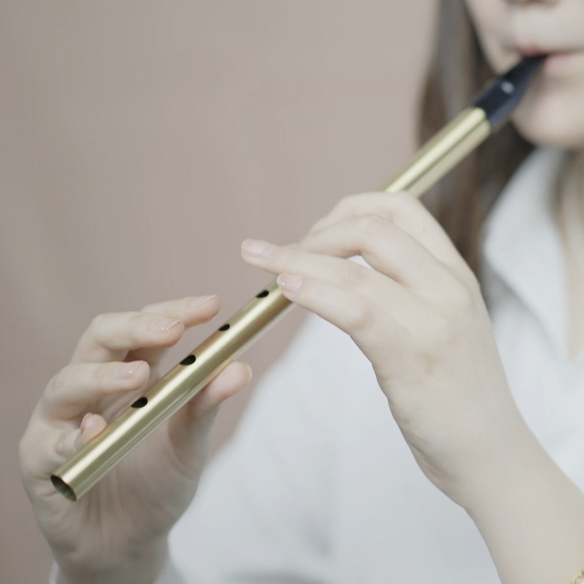 Brass Irish Whistle Flute C/D key 5