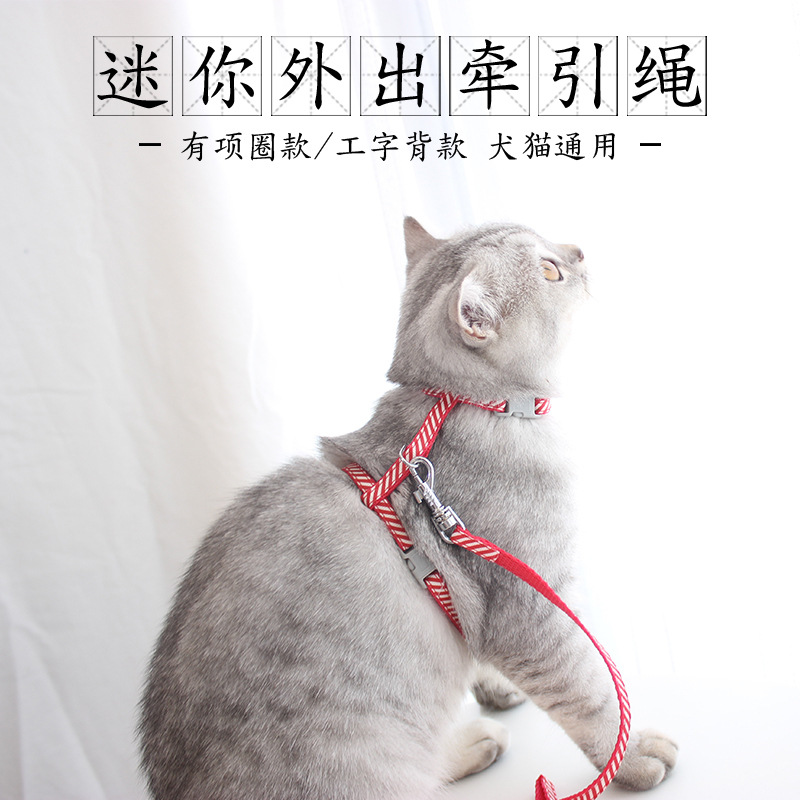 Dog Young Bell Puppy Hand Holding Rope Case Neck Cat Hand Holding Rope Universal Toy Teacup Dog Retractable Dog Cat