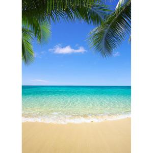 Image 3 - Summer Beach Photography Backgrounds Blue Sky Ocean Palm Waves Vinyl Photo Backdrops for Wedding Children Portrait Photo Studio
