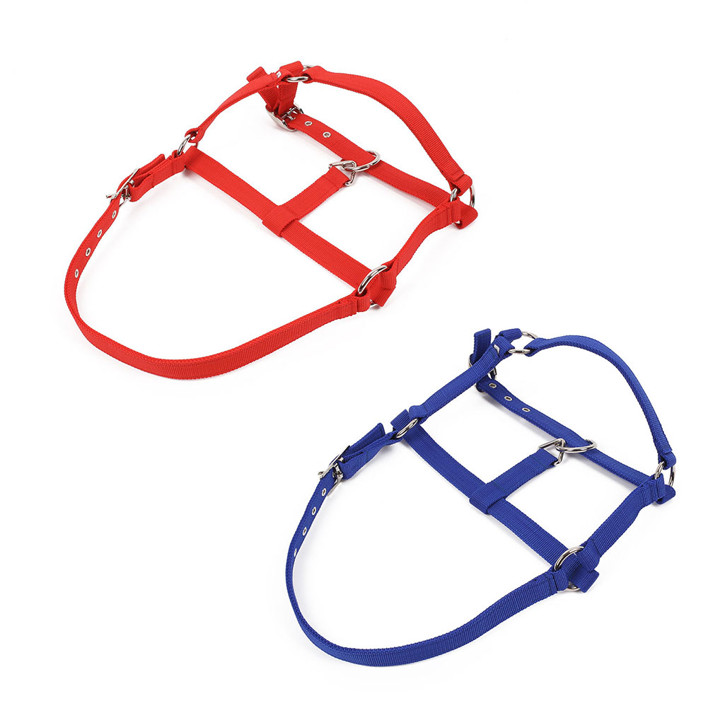 Horse Riding Woven Bridle Adjustable Halter Headstall Horsing Accessory Red/Blue
