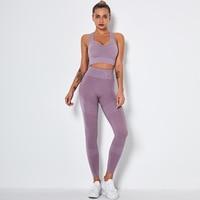 SETB-light-purple