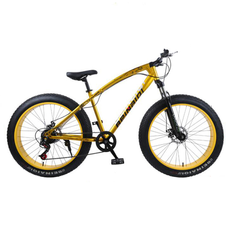 Mountain Bike 4.0 Fat Tire Bicycle Double Disc Brake Beach Bicycle Snow Bike Light High Carbon Steel Mountain Bicycle