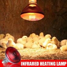 Recém 240v infra lâmpada de calor vermelho aves brocas pintos à prova dwaterproof água incubação filhotes leitão bulbo te889