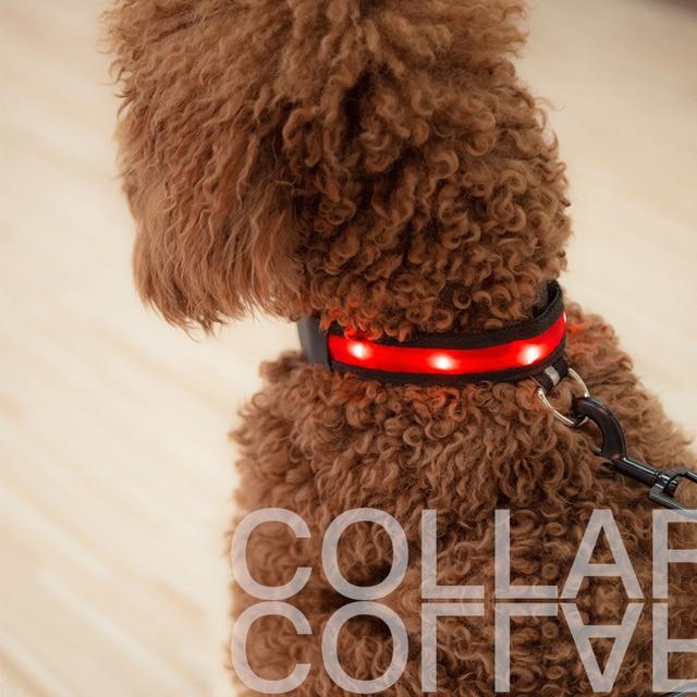 1PC Nylon LED Dog Collar Lamp With Dog Collar Night Safety Flashing Glow In The Dark Luminous Fluorescent Collars Pet Supplies 3
