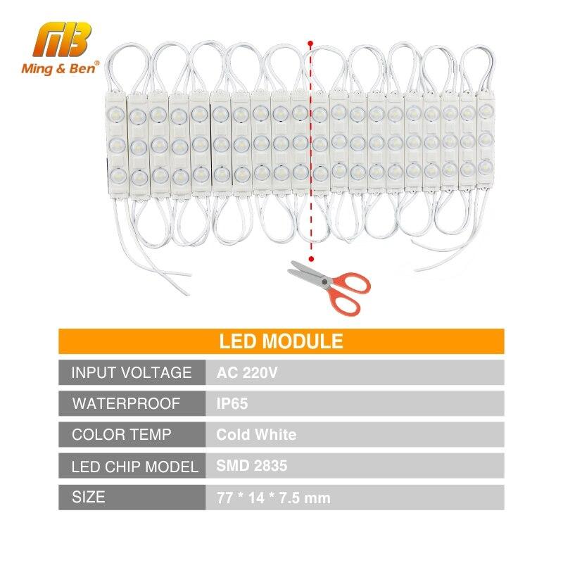 LED Module Light 220V 3LED Injection LED Module White 5PCS 10PCS 15PCS 20PCS/lot Super Bright Professional Wall Kitchen Light 2
