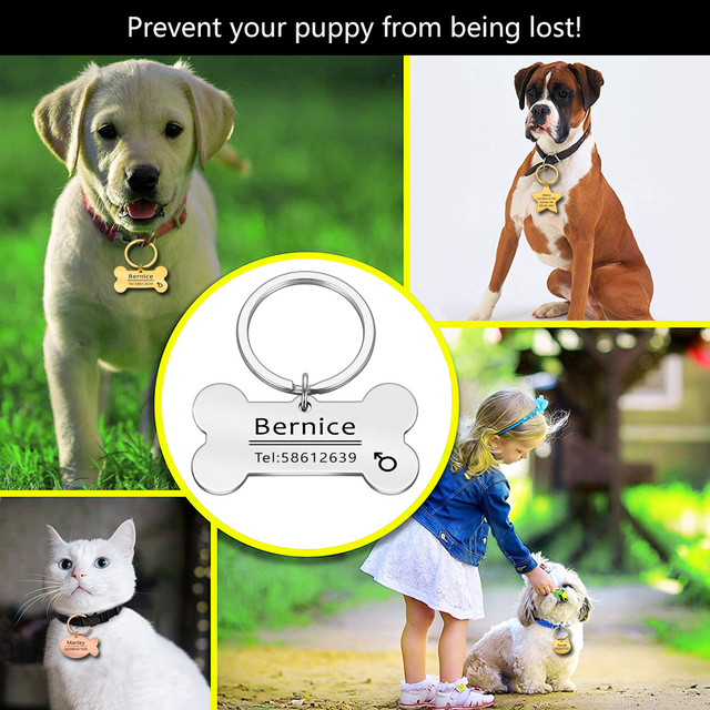Engraved Tag, Personalized Puppy Pet ID, Pet Tags for Dogs - Cats - Kittens  2