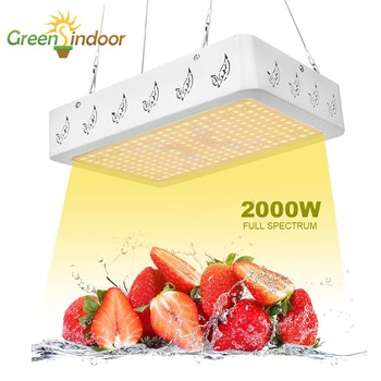 Led Grow Light 1000W 2000W Full Spectrum Phyto Lamp For Grow Tent Box Lamp For Plant Flowers Indoor Herbs Growth And Flowering
