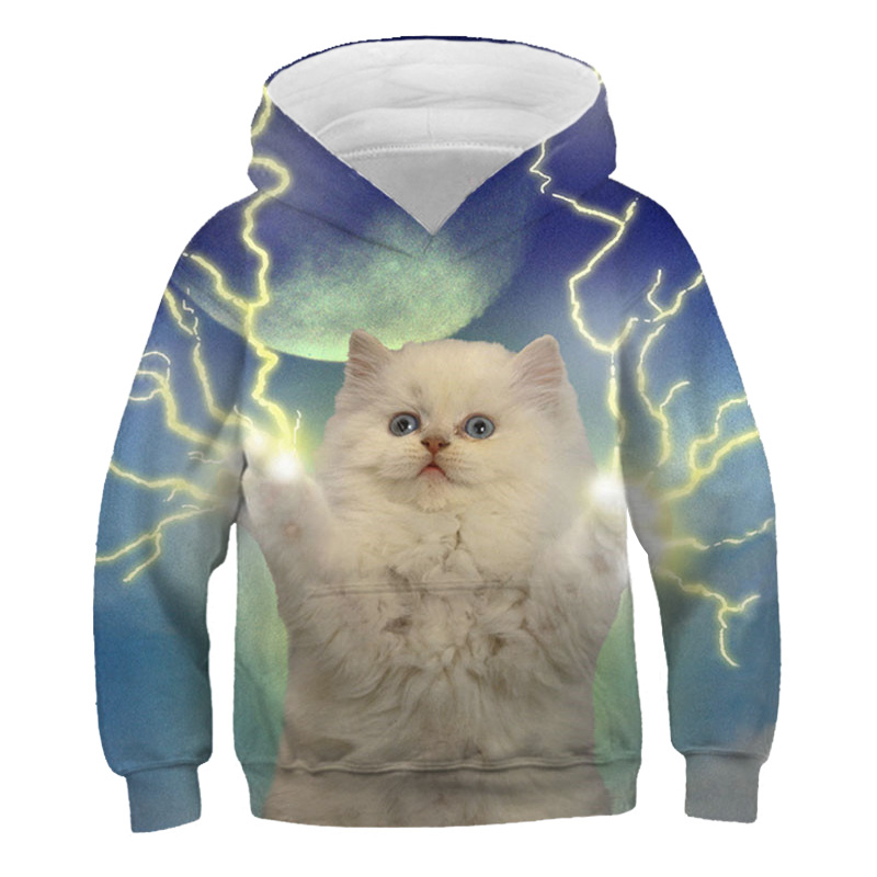 3D Print Cat Hoodies Kids Teens Long Sleeve Sweatshirts 3D Toddler Baby Boy Clothes Autumn Family Pullover Sweater Coat Tops 5