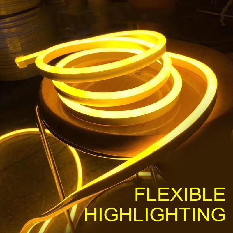 Home Decoration 12V RGB LED Strip Light Neon Light Waterproof SMD 2835 Flexible Ribbon Fita Strip Lamp 1M 2M 3M 4M 5M Tape TSLM2