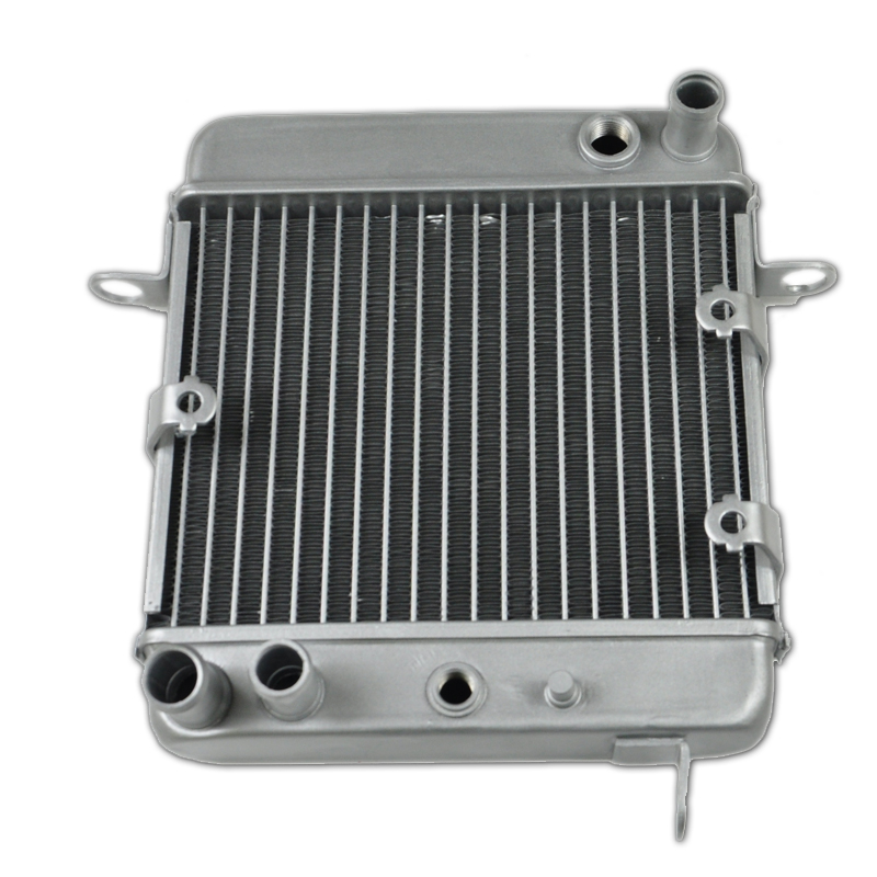 Motorcycle New Radiator For Honda Scooter NSS250 NSS250A NSS250S Reflex NSS250AS SAC 2001-2007 Aluminium Cooler