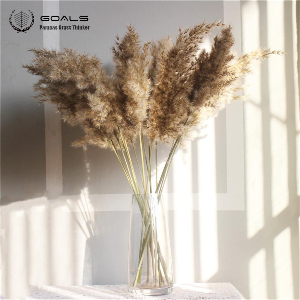 8 pcs 20pcs Free shipping real dried pampas grass decor wedding flower bunch natural plants decor