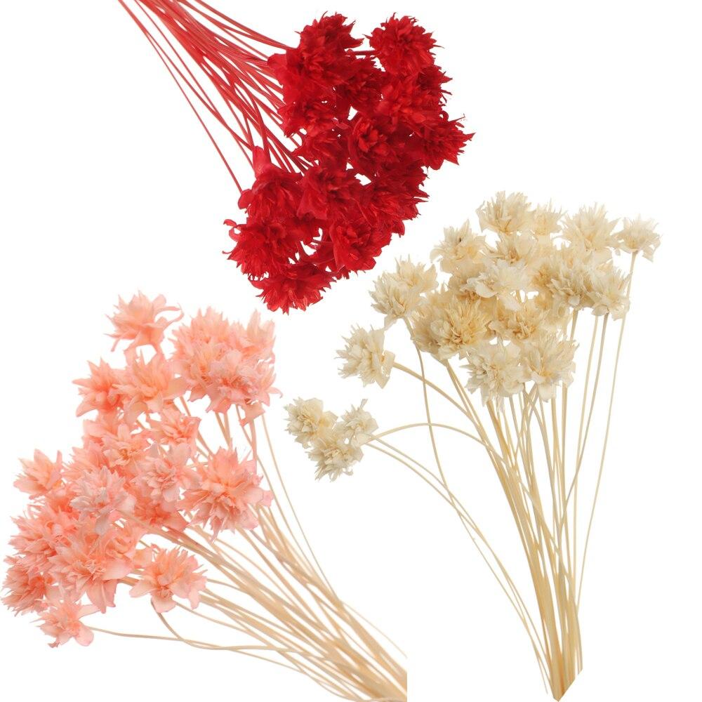 Сушеные цветы, миниатюрный букет из натуральных растений, 1 пакет, для украшения дома и свадьбы