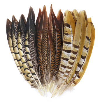 10Pcs Natural Pheasant Feathers for Crafts Jewerly Making Wedding Home Decoration Chicken Pheasant Tail Plumes Wholesale 10pcs lot natural ringneck pheasant tail feathers for crafts 25 75cm 10 30 wedding decorations pheasant feather plumes plumas